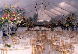 40-Wide-Tent-with-Skylight-and-Twinkle-Lights-300x209