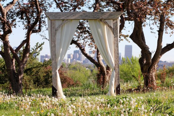 10' Rustic Arch - With Drape